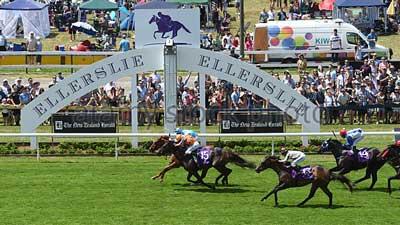 Ellerslie Racecourse in Auckland Central, New Zealand