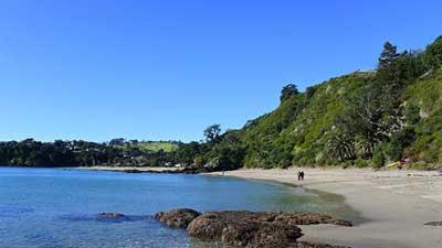 Palm Beach Lookout Path in Waiheke Island NZ