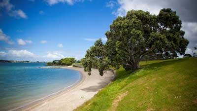 Point England Reserve in Auckland Central NZ